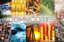 Commodities-Vadodara.png